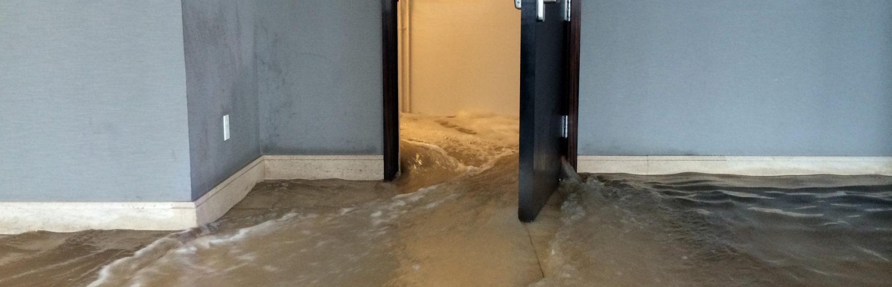 Устранение последствий потопа
