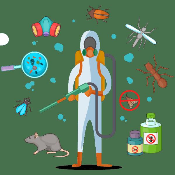 Основные правила дезинфекции